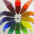 Nick Scrimenti - Color Wheel