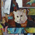 Nick Scrimenti - Cat House